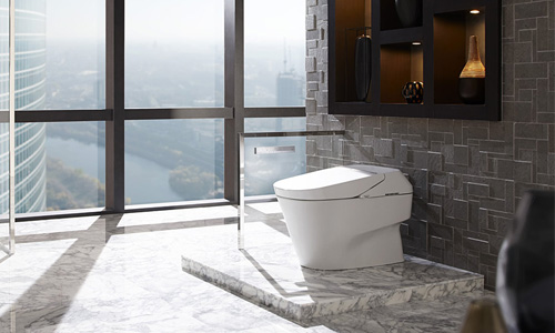 Neorest 700H Dual Flush Toilet